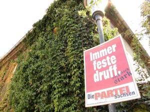 Anleitung für die Pflanzung von Gebäudeflora